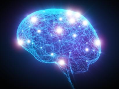 นายก 'ประยุทธ์' ได้กล่าวใว้ว่า เซลล์สมองมนุษย์ไม่ได้มี 8.4 หมื่นเซลล์