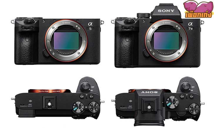 ลือ! Sony A5 กล้องฟูลเฟรมระดับเริ่มต้นที่มีสเปกใกล้เคียง A7III แต่มาในขนาดเท่า A6600